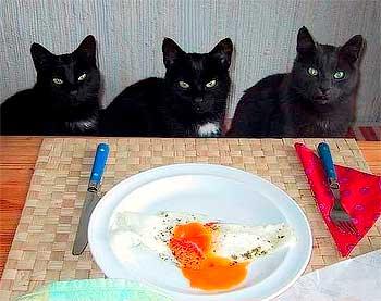 умеешь ли ты вести себя за столом?