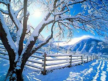 Зима, и всё опять впервые…