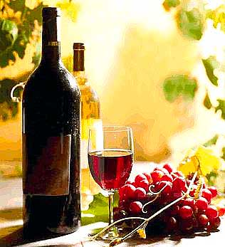 худосочное вино