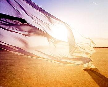 Ветер, ветер — на всём божьем свете…