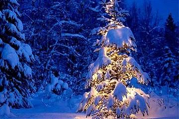 Рождество, праздник детский, белый